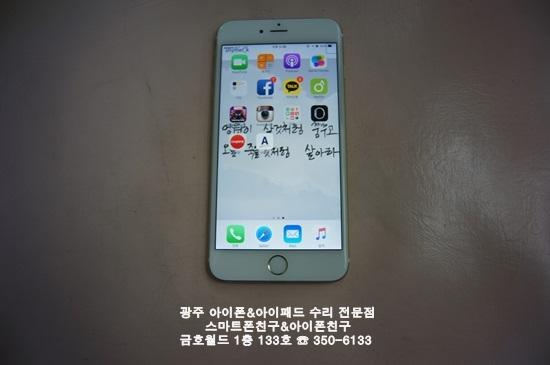 6+ 김경옥(액)02.JPG