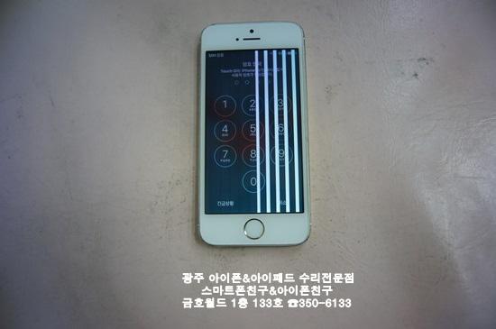 5s 박시원(액)01.JPG