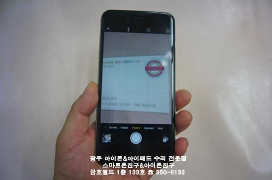 6+ 목단(후카)01.JPG