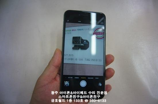 6+ 목단(후카)03.JPG