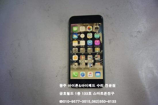 6_홍준석(배)01.jpg