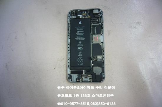 6_홍준석(배)02.jpg